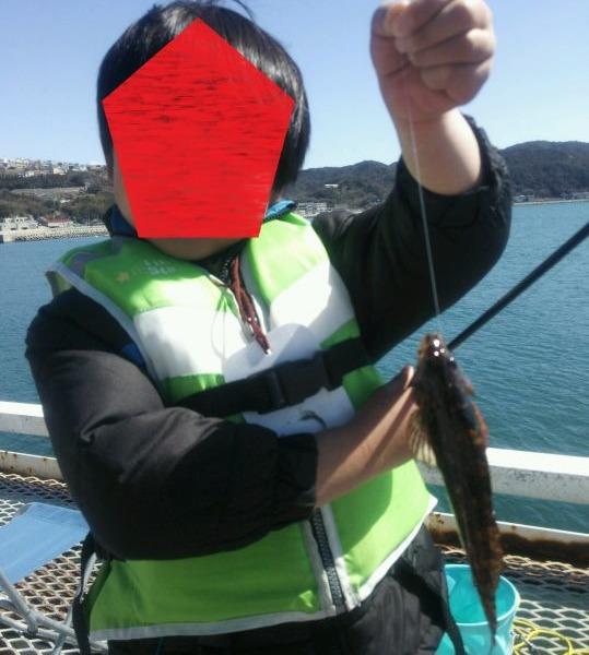 アイナメが釣れました!