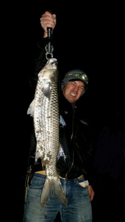 テラピア狙いでしたが本命は釣れずスレ掛かりですがトドサイズ釣れま…