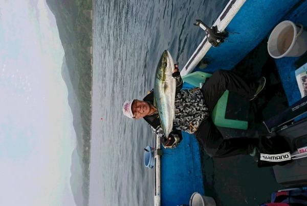 釣果5月6日午後便 ブリ85cmと80cm、真鯛10枚、キジハタ3枚、カサゴ3枚