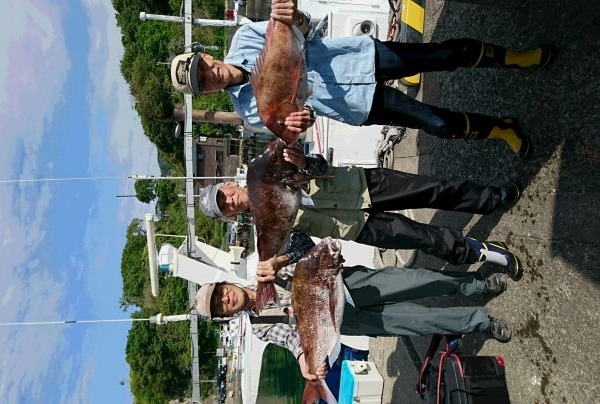 釣果5月5日午後便 真鯛83㎝、80cm、75センチ2枚、72センチ、70センチ2枚、68センチ2枚 クロダイ45センチまで26枚