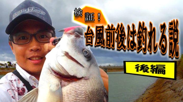 台風前日にレア魚?珍魚?