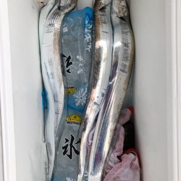 9月20(小潮)ウネリが落ち着きプライベートでガチサーべリング……激シブ