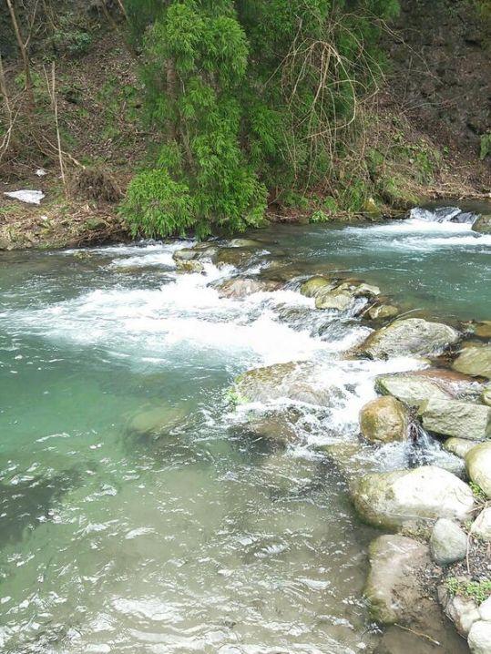 このように自然の渓流をいくつかに区切って魚を放流してもらって釣ら…
