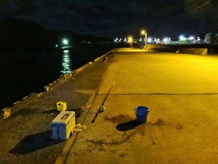 常夜灯が明るく、安全な釣り場。 大サバ入れ食いですが、今夜は誰…
