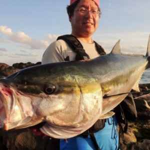八丈島 ヒラマサのショアプラッキングゲーム 地磯から17.5kg!!