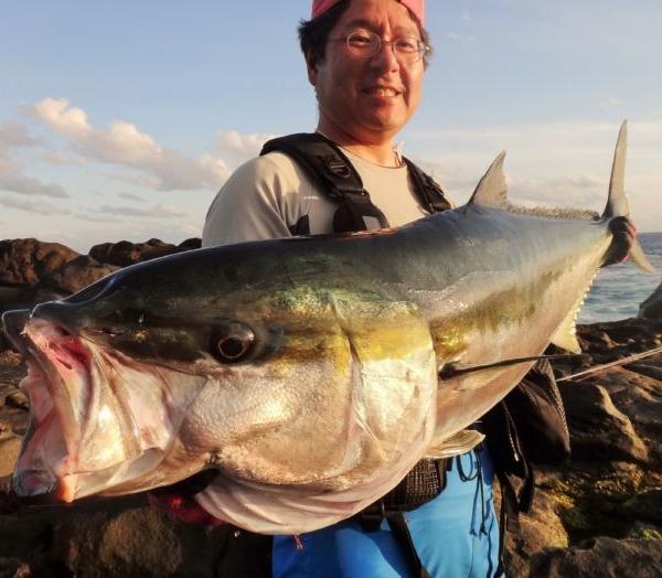八丈島 ヒラマサのショアキャスティングゲーム 地磯から17.5kg!!