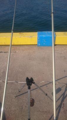 砂浜では釣れないから、河口で置き竿。早く港内の藻がなくなってほし…