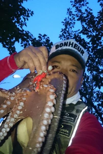 海藻場‼攻略しての1.15㌔を頭に3蛸get🎵ワンナック販売→デビル最強(^^)v