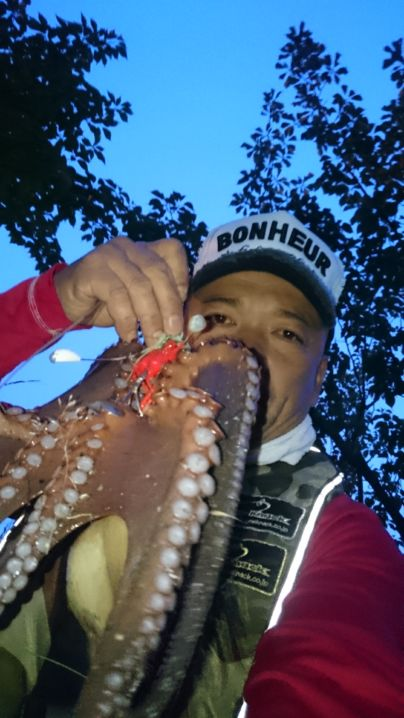 藻場攻略↑1蛸目get🎵 ワンナック販売デビルエイト33㌘に……