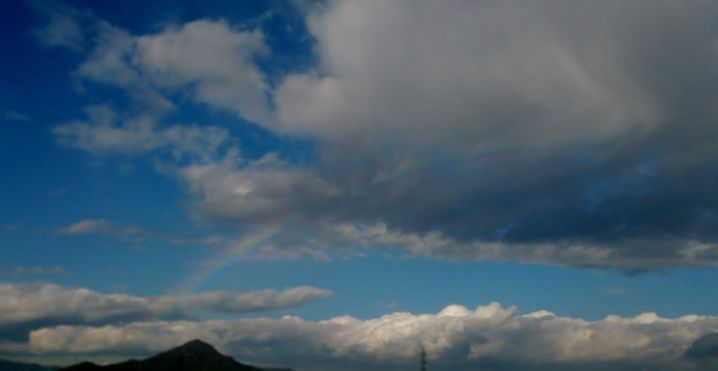 虹のおかげです。