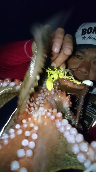 藻場攻略↑2蛸目get🎵 デビルエイト33㌘に…デビルクローチ…