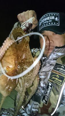 今季…一番の寒さの中⤴寒蛸get‼