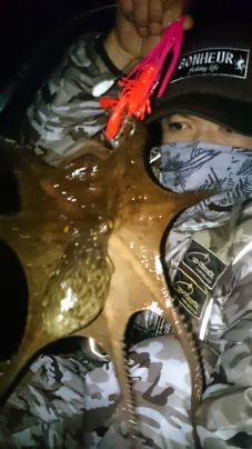 蛸…大漁祈願後に寒蛸get(^^)v