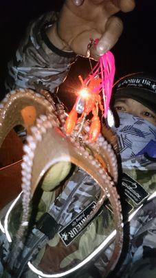 寒波到来…激寒の中‼ 価値ある寒蛸がとれました( ^-^)ノ∠…