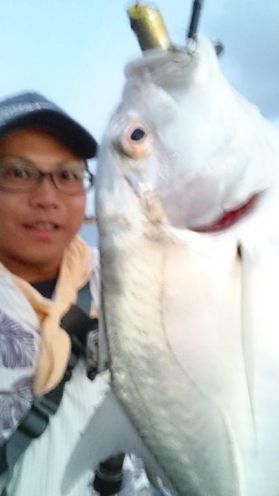 ポッパーで釣るのはやはり楽しい♪