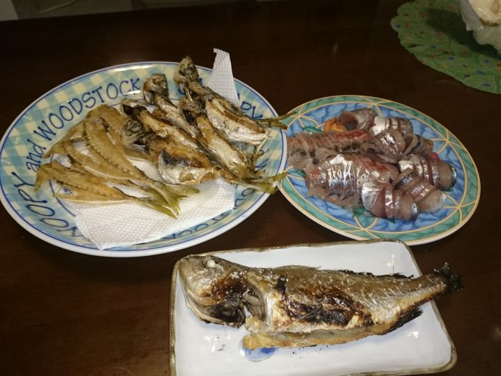 東京湾 アジ釣り 89匹