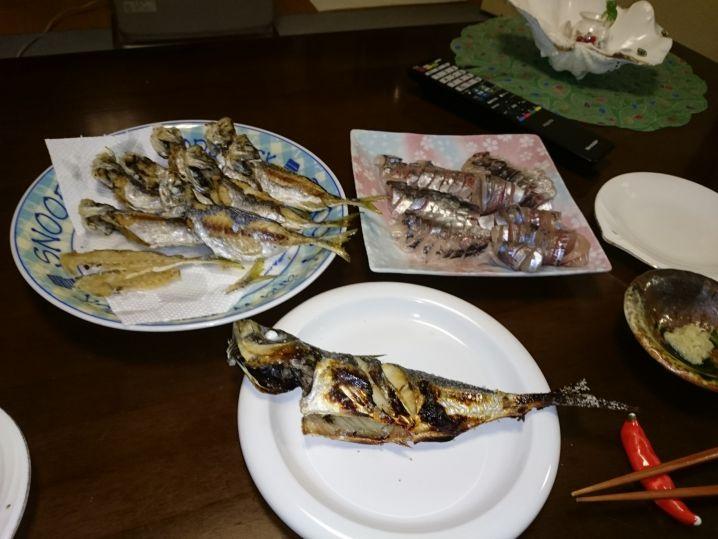 やはり✨東京湾のアジは❗ 美味しいですね🙆