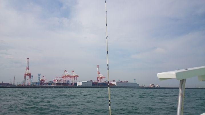 ベタ凪ぎ 移動中です❤冨岡沖でビックを連発❕ 型はさまざまか…