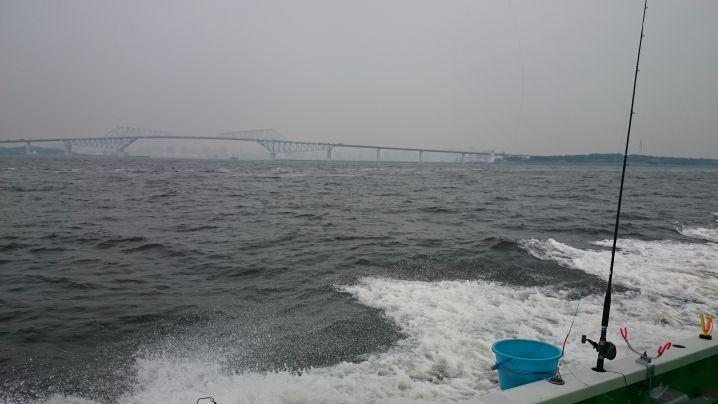 やはり☀東京湾のアジ釣り🎣は最高ですね