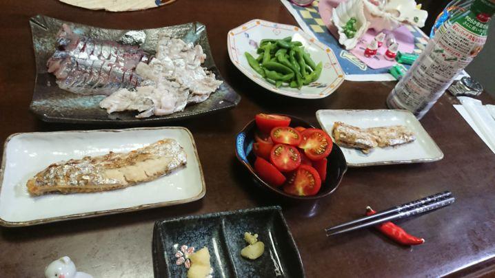 夏の太刀魚☺️初参戦🎵