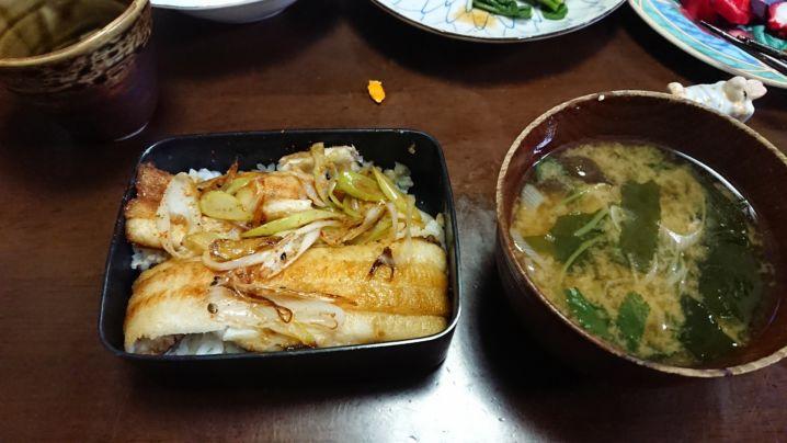 太刀魚🎣はまりました