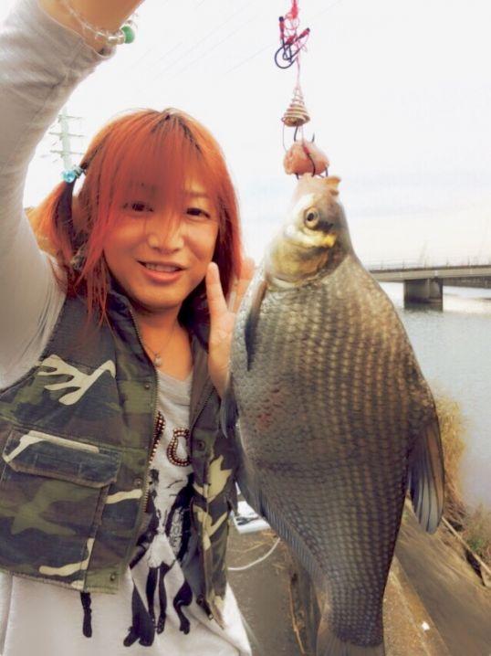 激レア魚!中国から入った外来種で、ダントウボウって魚です🐟