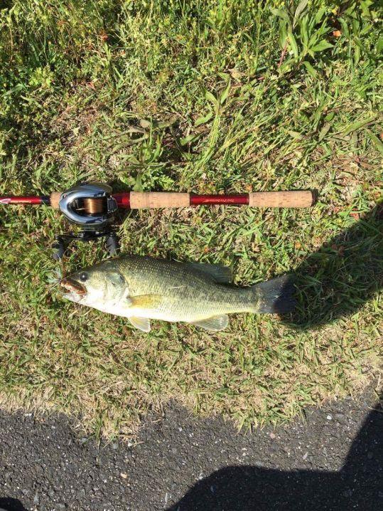 三重県在住のMさんからの釣果をご紹介します。  GWでアング…