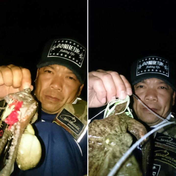 子蛸ですが😅大満足です(^^)v 撮影後リリースです‼水産資源…