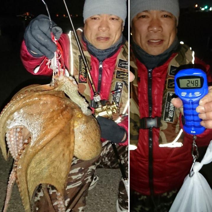 激寒で…海水温低下の激シブの中で2.48㌔の真蛸GET(^-^)…