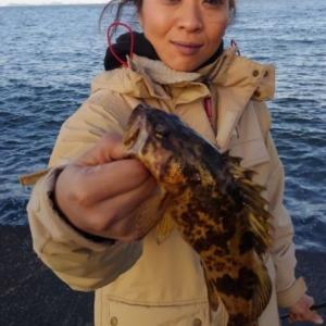 根魚ちゃん釣れだしましたー❗