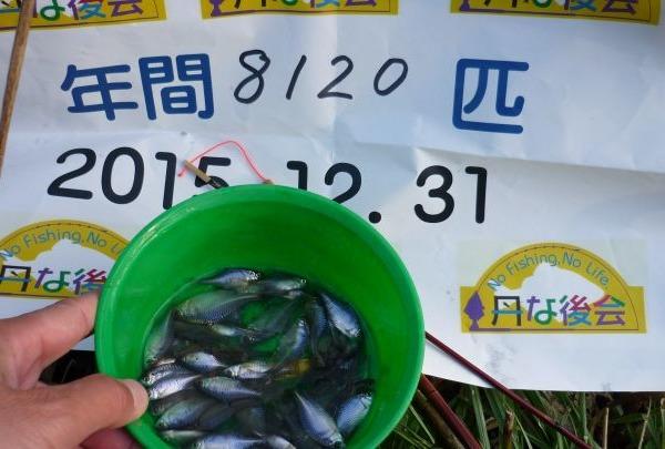 2015年通算釣果、、8120タナゴです(*^^)v