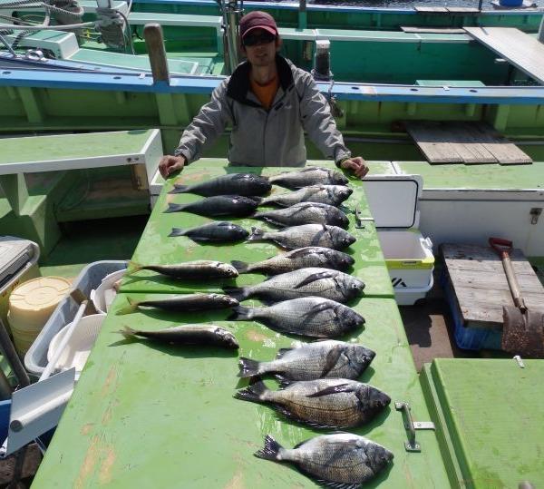 クロダイ10尾、メジナ3尾、大アジ3尾釣れました!