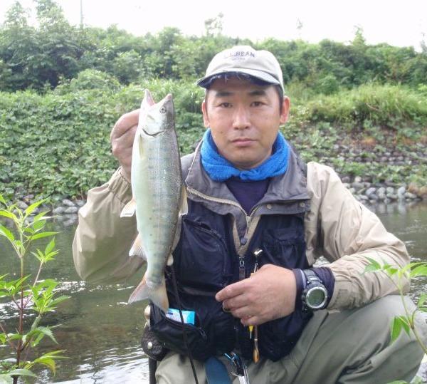 昨年の釣果です! 富士川水系の尺上アマゴ