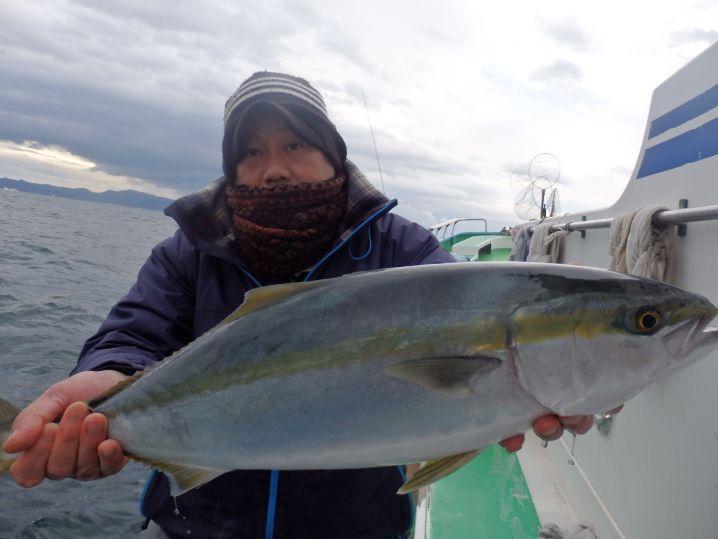 マダイ船でワラサが釣れました