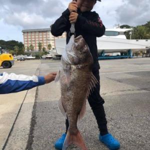 今、あがりました!!山口県萩市 マリーナ萩沖の うたぐり で、小学生がタイラバで、大型のタイが!!!