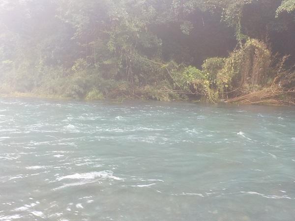 台風後で川は増水していました。