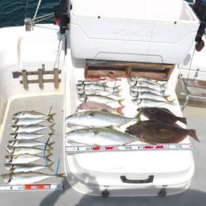 大阪湾遊漁船SOUTH(サウス)釣果