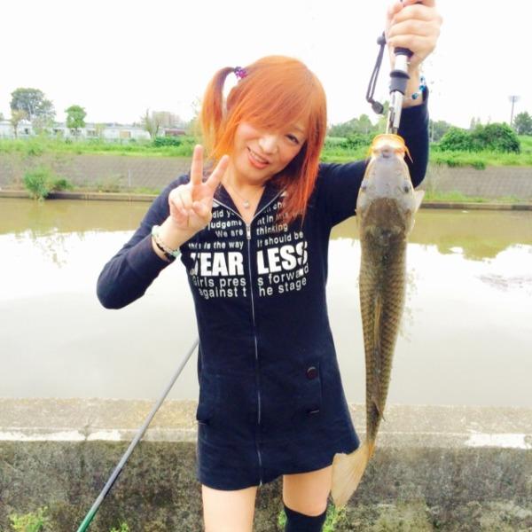 鯉釣ったよ〜(=^ェ^=)