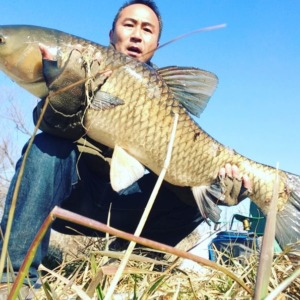 2016 green carp