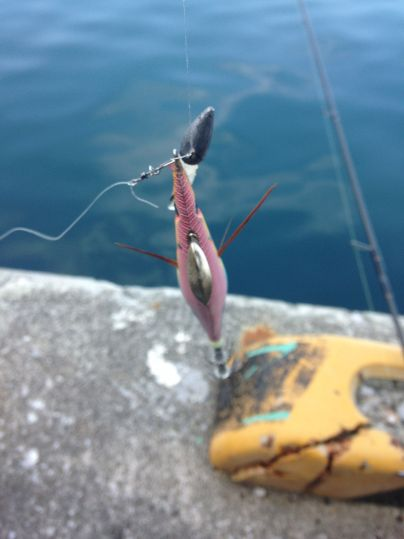 今年の初釣