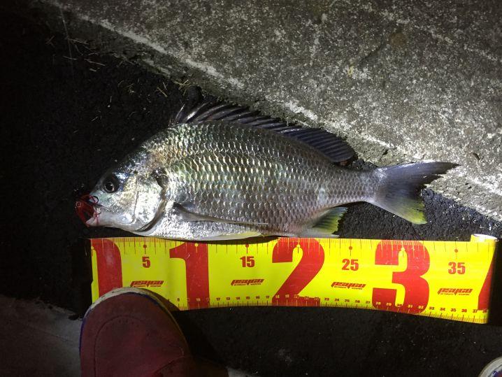 釣れても釣れても小型…。