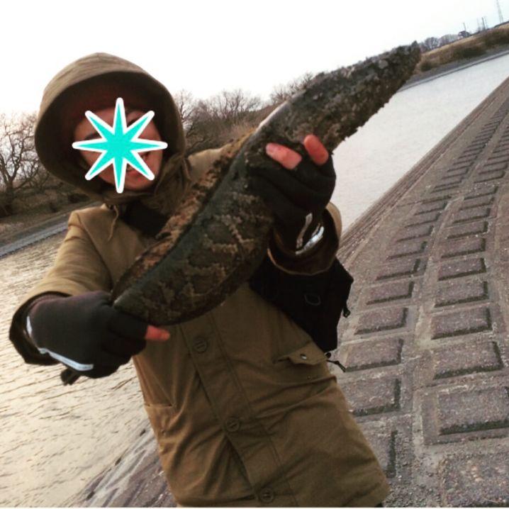 小貝川にて雷魚釣果!2016/2/28