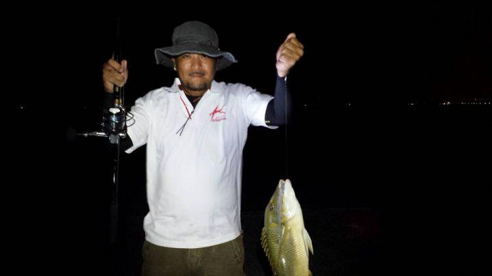 最近購入した竿とリールで釣れました