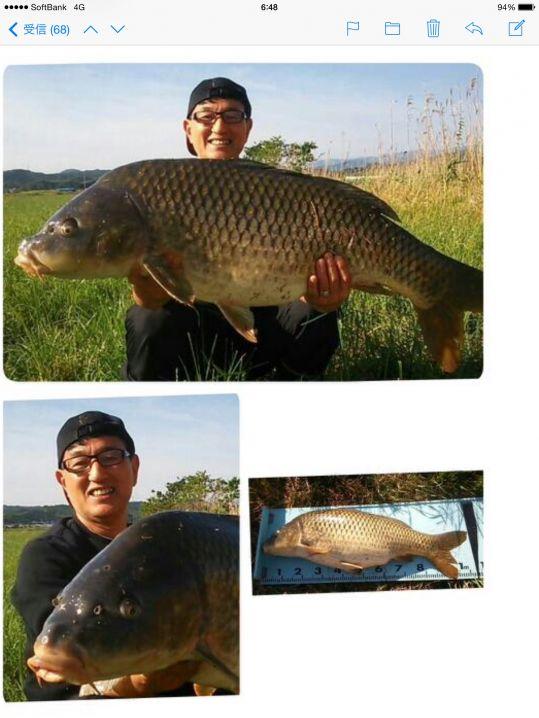メーターオーバーの鯉が釣れました。