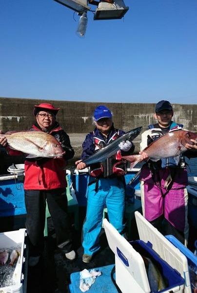 釣果11月12日午前便 ヒラマサ65センチまで5本 サワラ80センチ1本 真鯛73センチまで21枚 イシダイ1枚