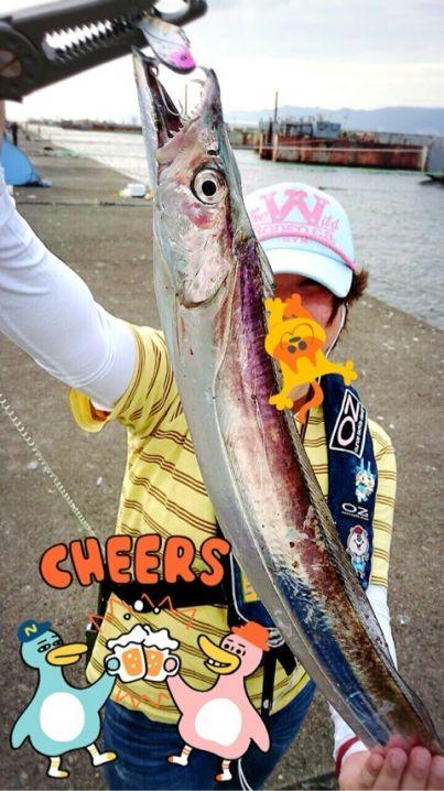 今年はたくさんタチウオが釣れています♪