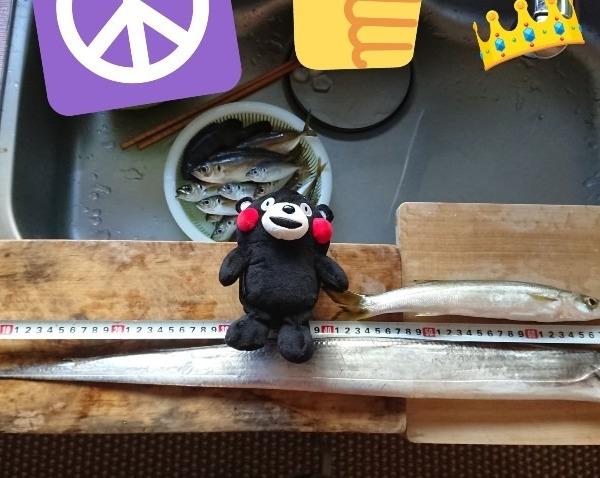 スプーン釣り部:釣果報告