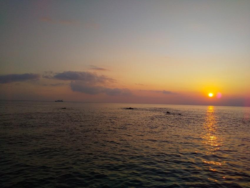 城ヶ島 長津呂の磯でサバ・エボ鯛など