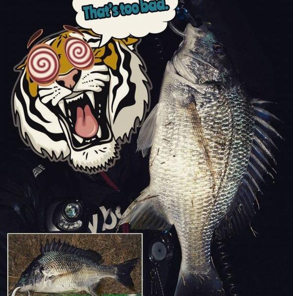 釣れない2月、冬の大淀川チニング。