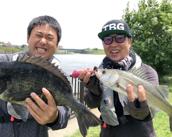 旧江戸川でクロダイ、シーバスゲット!!!